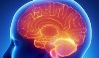 Imagem 131 de Massagem Cerebral? Conheça o ASMR