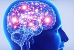 Imagem 119 de O funcionamento das Ondas Cerebrais – E os Óleos Essenciais: